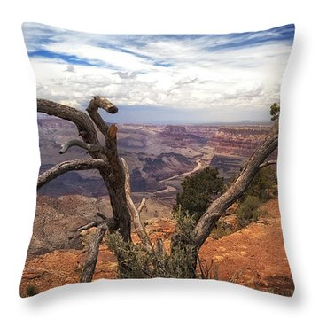 Grand Canyon River View Throw Pillow by James Bethanis