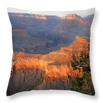 Grand Canyon South Rim - Red Berry Bush Along Path Throw Pillow