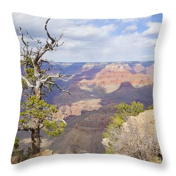 Throw Pillow featuring the photograph Grand Canyon View by Chris Dutton