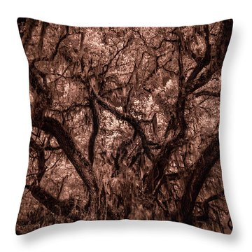 Throw Pillow featuring the photograph Grand Daddy Oak Tree In Infrared by Louis Ferreira