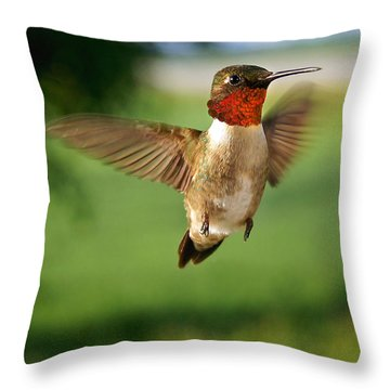 Grand Display Throw Pillow