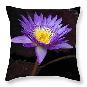 Throw Pillow featuring the photograph Grand Entrance by Byron Varvarigos