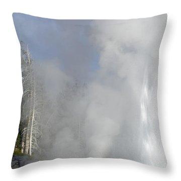 Grand Geyser Vertical Throw Pillow