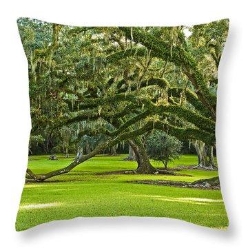 Grand Lady Throw Pillow by Scott Pellegrin