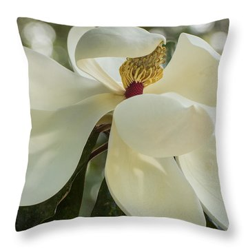 Throw Pillow featuring the photograph Grand Magnolia  by Julie Andel
