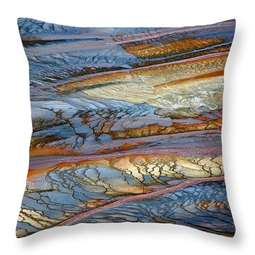 Grand Prismatic Runoff Throw Pillow by Bruce Gourley