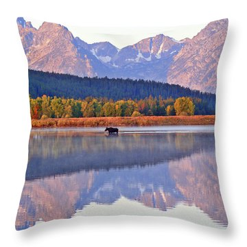 Grand Reflections Throw Pillow by Scott Mahon