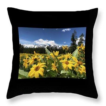Grand Teton Mountains Throw Pillow