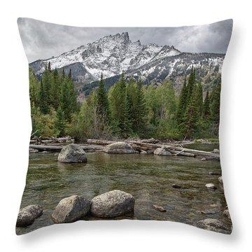 Grand Tetons  8b7677sa Throw Pillow