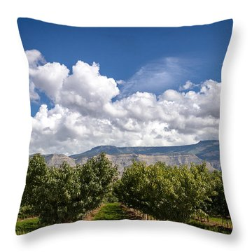 Grand Valley Orchards Throw Pillow