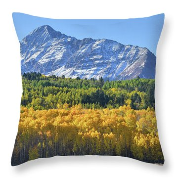 Throw Pillow featuring the photograph Grand Wilson Mesa Landscape by Ray Mathis