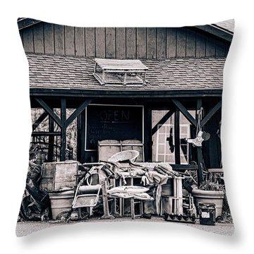 Grandma's Attic Throw Pillow