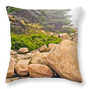 Granite Boulders Acadia Throw Pillow