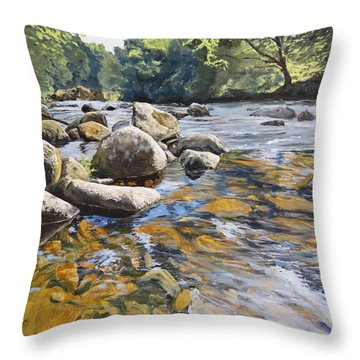 Throw Pillow featuring the painting Granite Boulders East Okement River by Lawrence Dyer
