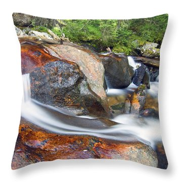 Granite Falls Throw Pillow by Gary Lengyel