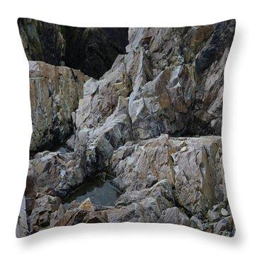Granite Shore Throw Pillow
