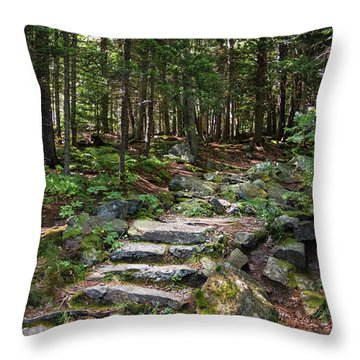 Throw Pillow featuring the photograph Granite Steps, Camden Hills State Park, Camden, Maine -43933 by John Bald