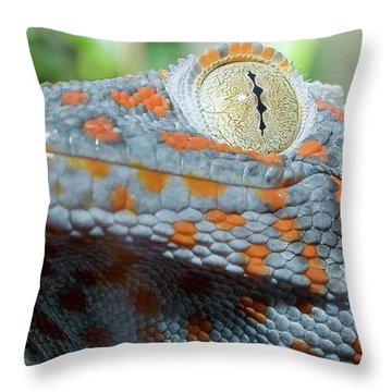 Granma What Big Eyes You Got Throw Pillow by Don Mennig