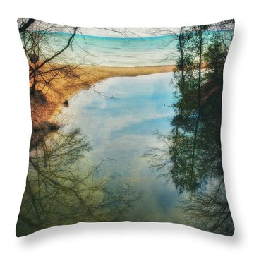 Throw Pillow featuring the photograph Grant Park - Lake Michigan Shoreline by Jennifer Rondinelli Reilly - Fine Art Photography