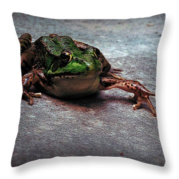 Granter Of Three Wishes Throw Pillow
