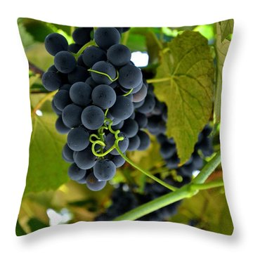 Grape Arbor 2 Throw Pillow