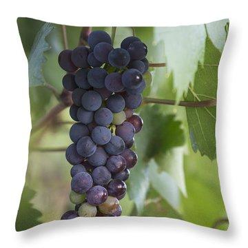 Grape Fruit Throw Pillow