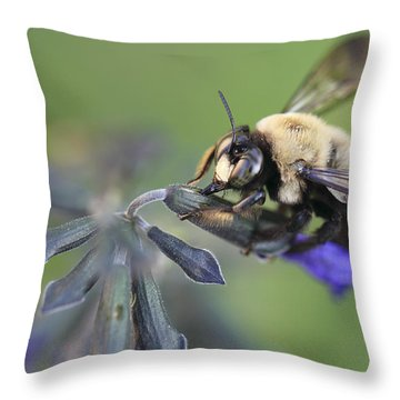 Grape Juice Throw Pillow
