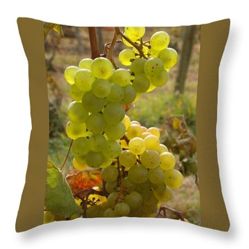 Grape Spiral Throw Pillow by Patricia Overmoyer