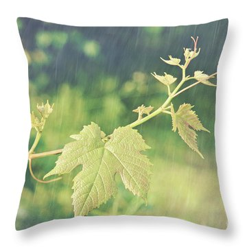 Grape Vine Against Summer Background Throw Pillow by Sandra Cunningham
