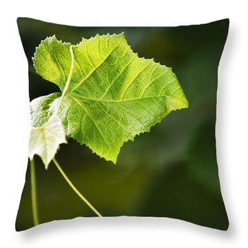 Grape Vine Throw Pillow by Christina Rollo