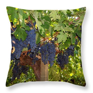 Grapes Are Ready Throw Pillow