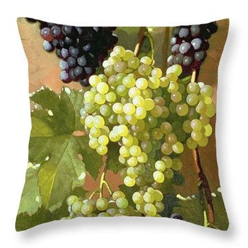 Grapes Throw Pillow by Edward Chalmers Leavitt
