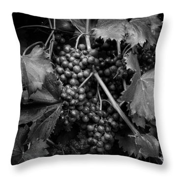 Grapes In Black And White Throw Pillow