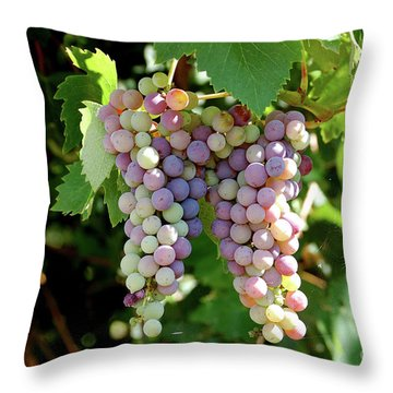 Grapes In Color  Throw Pillow