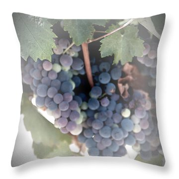 Grapes On The Vine I Throw Pillow by Sherry Hallemeier