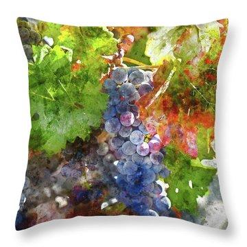 Grapes On The Vine In The Autumn Season Throw Pillow