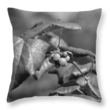 Grapes On The Vine  Throw Pillow