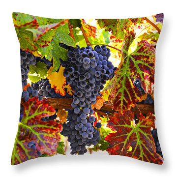 Grapes On Vine In Vineyards Throw Pillow