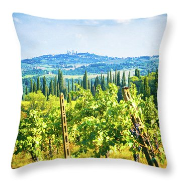Throw Pillow featuring the photograph Grapevine In San Gimignano Tuscany by Silvia Ganora