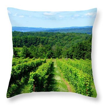 Grapevines On Old Mission Peninsula - Traverse City Michigan Throw Pillow by Michelle Calkins