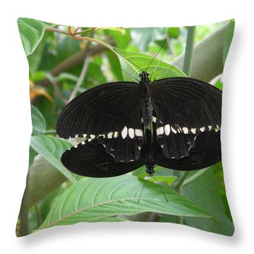 Graphic Sex In The  Butterfly House  Throw Pillow