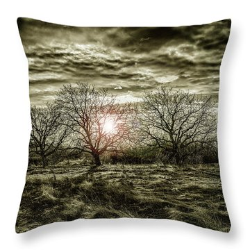 Graphical Throw Pillow