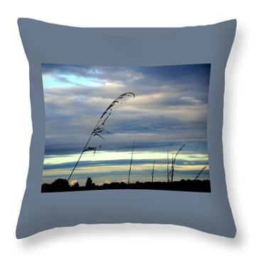 Grass Against Abstract Sky Throw Pillow