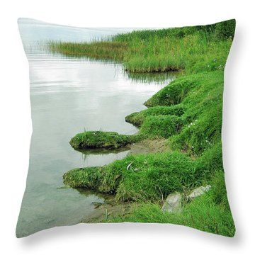 Grass And Water Throw Pillow
