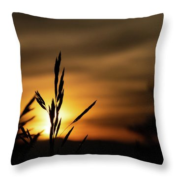 Grass At Sunset Throw Pillow