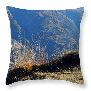Grass In The Foreground, The Main Valley Of The Swiss Canton Of Valais In The Background Throw Pillow