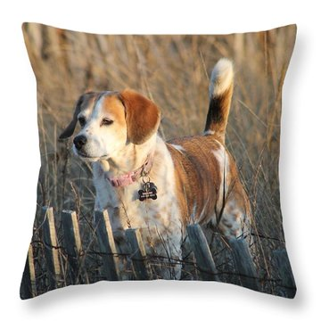 Grass Is Always Greener... Throw Pillow by Robert Banach
