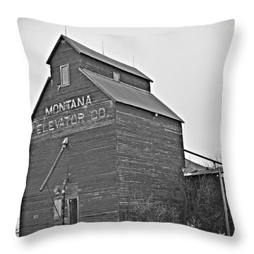 Grass Range Granary Bw Throw Pillow