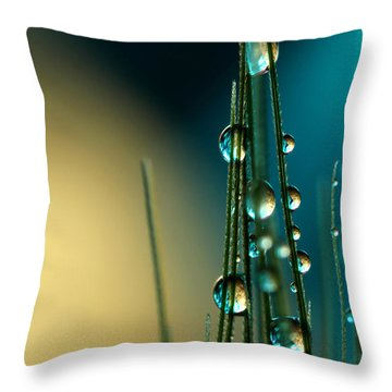 Grass Seed With Blue Throw Pillow