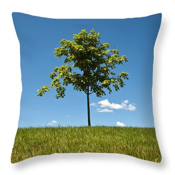 Grass Tree Cloud Sky Throw Pillow by Tom McCarthy